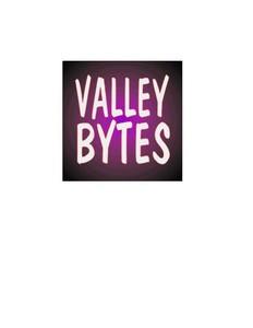 Valley Bytes